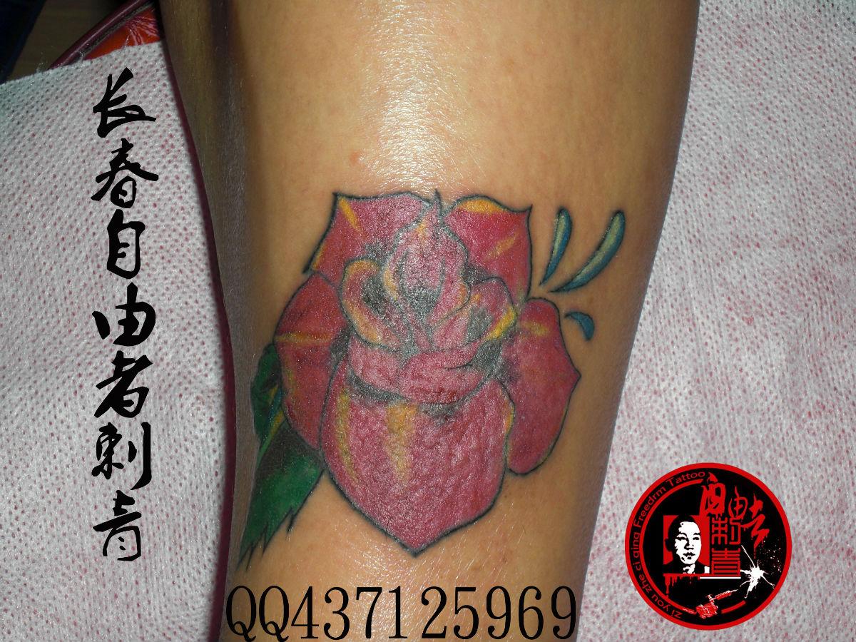 胎记 疤痕覆盖纹身图片