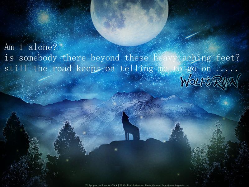 孤狼啸月苍狼的壁纸 孤狼啸月纹身 啸月天狼壁纸 高清图片