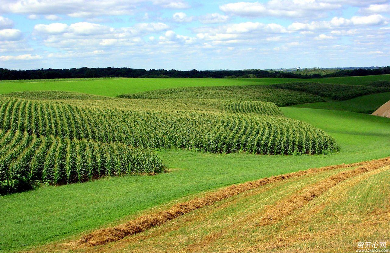 【图片】美国农村