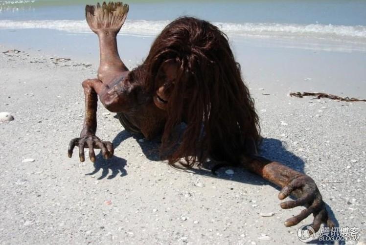美人鱼尸体惊现海滩 真假难辨图片
