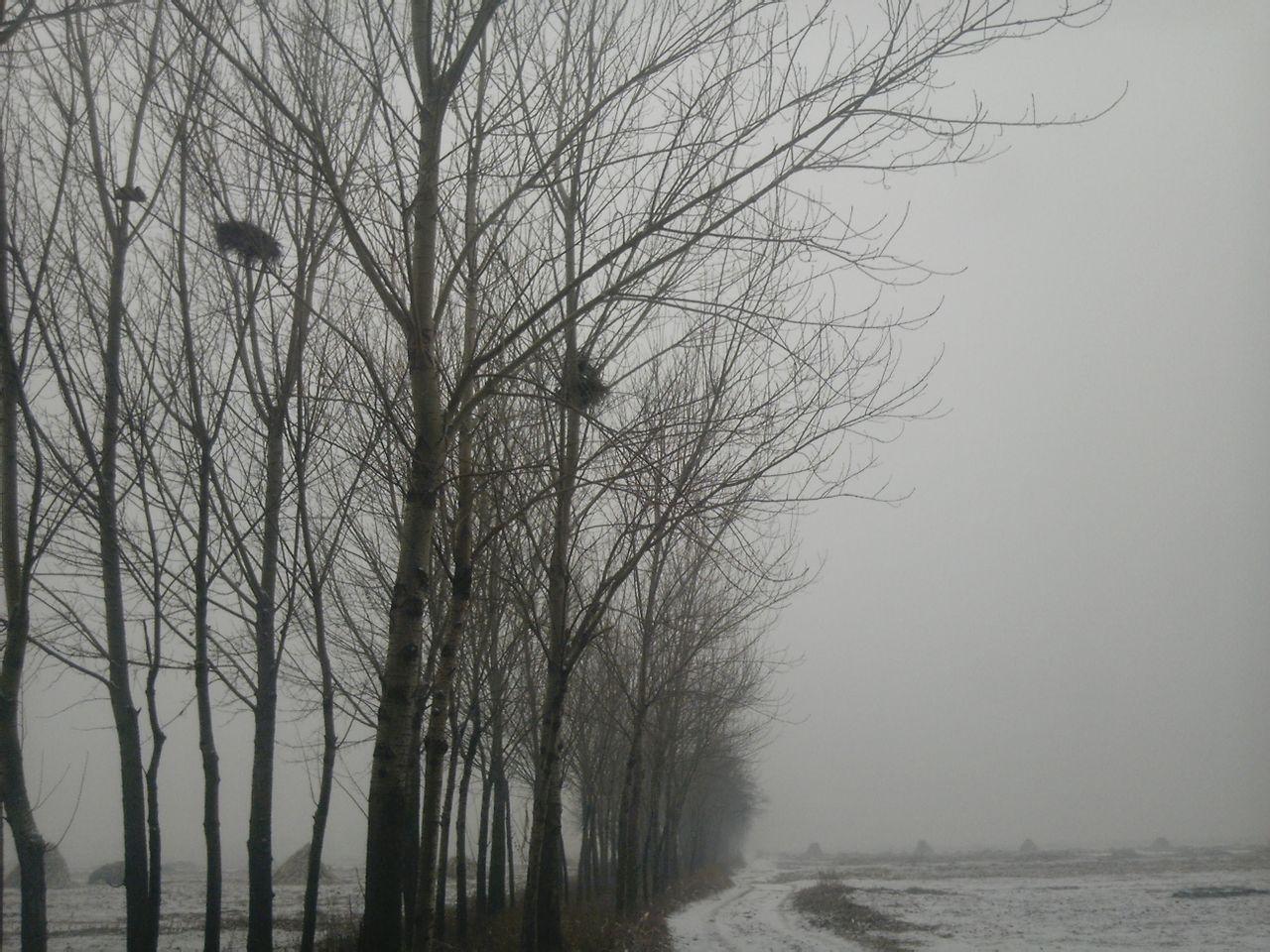发两张今天在乡下照得雪景图片