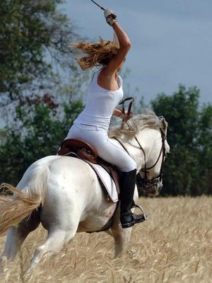 有大量美女虐骑马的图片和视频