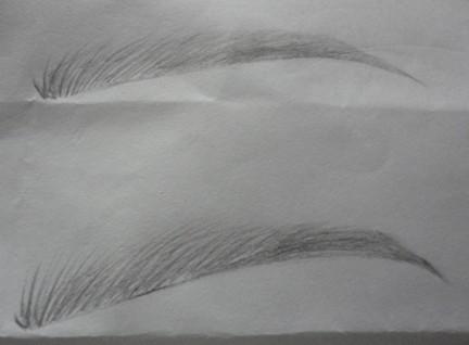 初学眉毛素描的画法