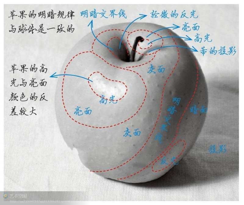 苹果创意素描图片
