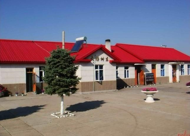 内 蒙古 鄂伦春 大 杨树 东站 加格达奇 大 杨树 红