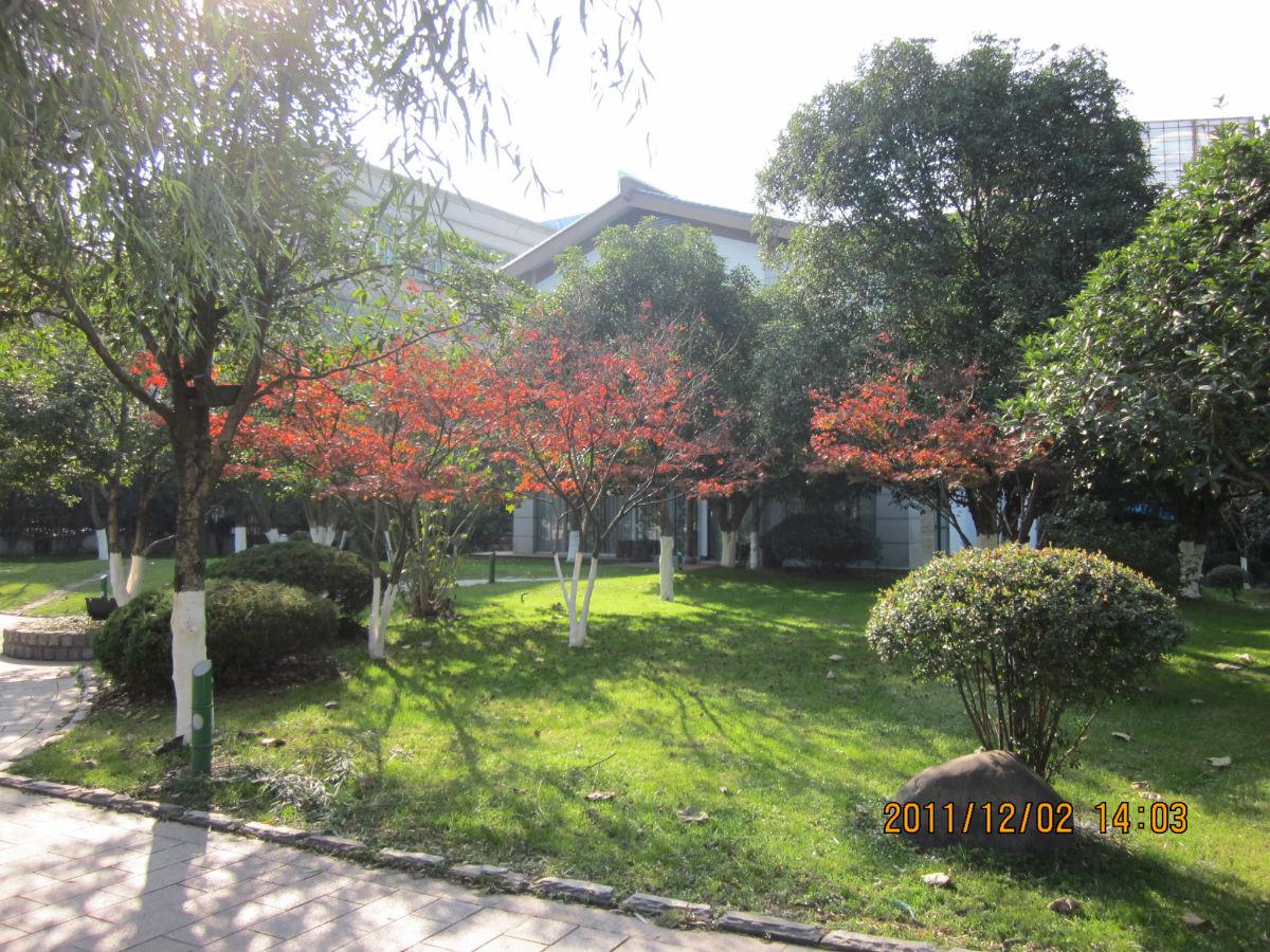 浙江,安吉,美丽乡村图片
