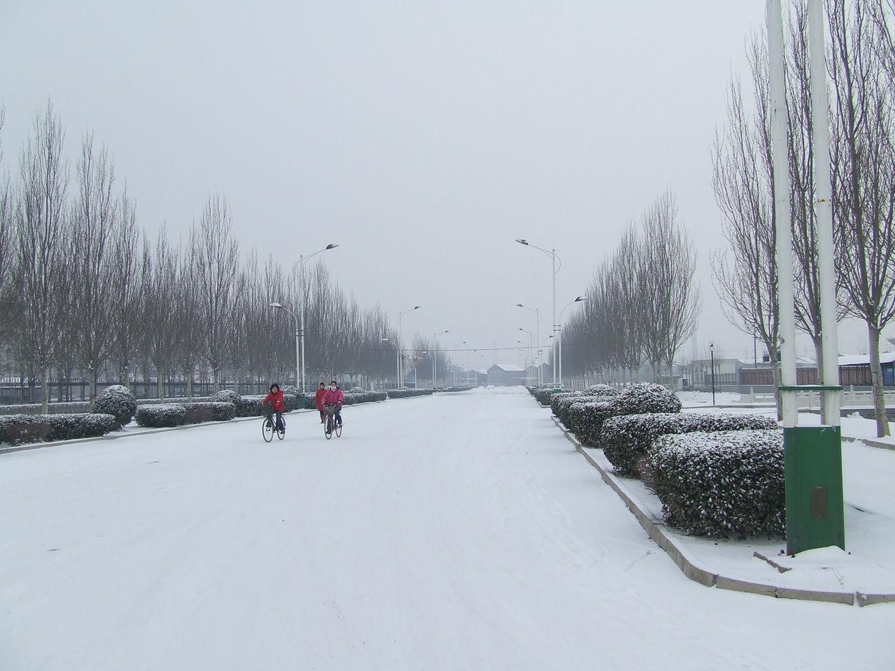 2008的第一场雪_2008年的第一场雪 雪夜
