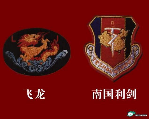 pon 我军军特种部队臂章