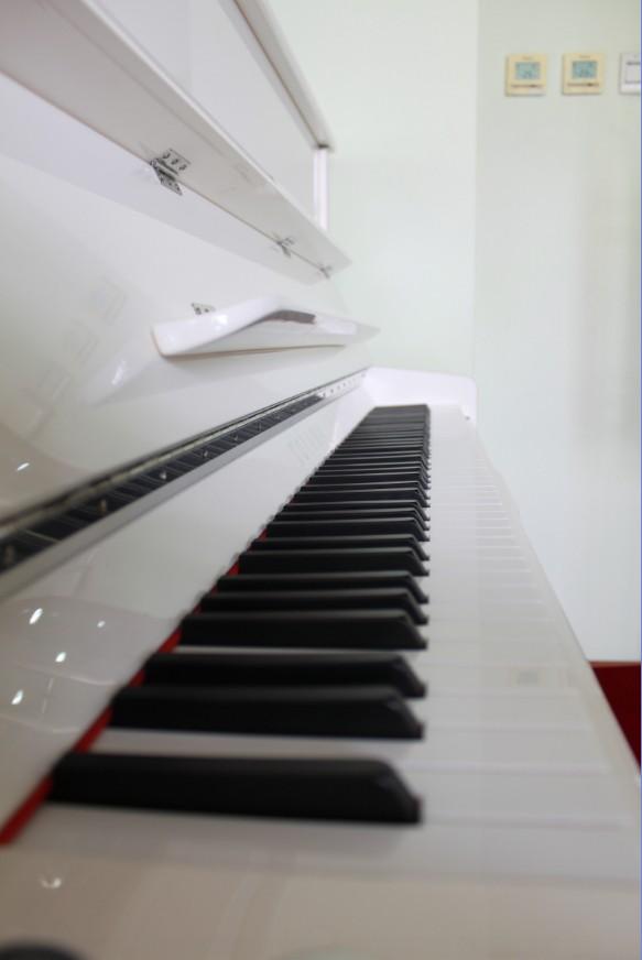 拍了一些钢琴的图片图片