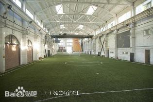 铺设专业人造草坪,三维球网分隔,晚间明亮的球场照明,冬季专业高清图片