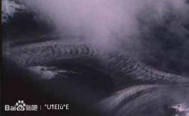 青岛渔民捞到龙尸_青岛渔民疑捞到龙尸青岛渔民打捞到一条龙青