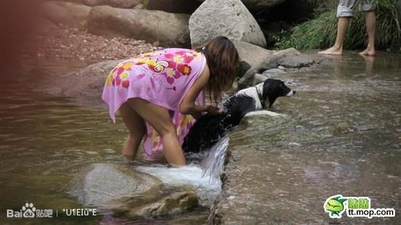 欧美人交与狗图片图片 人与交狗卡住的图片,人与交狗配图片   男不养