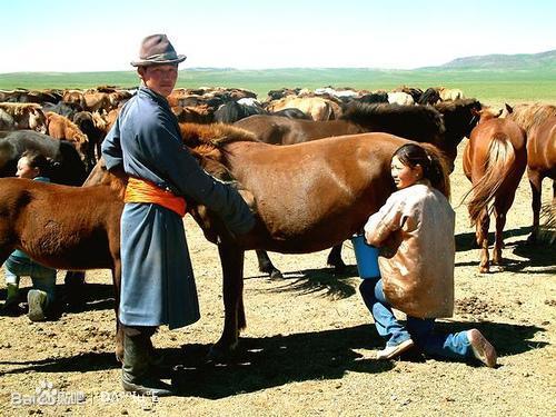 这次三人结伴,来到蒙古图片