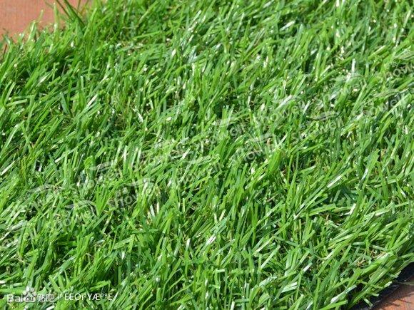 草皮底部是否损害、撕裂、灼烧等.大的修补应及时联系铺装公高清图片