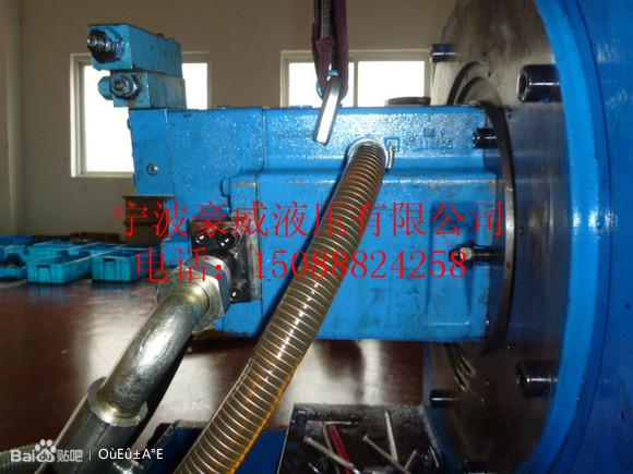 闭)式液压泵马达图片