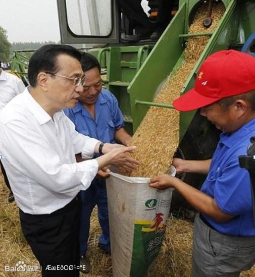 奇瑞谷王联合收割机进行小麦收割的司机老周,从六月初便在河高清图片