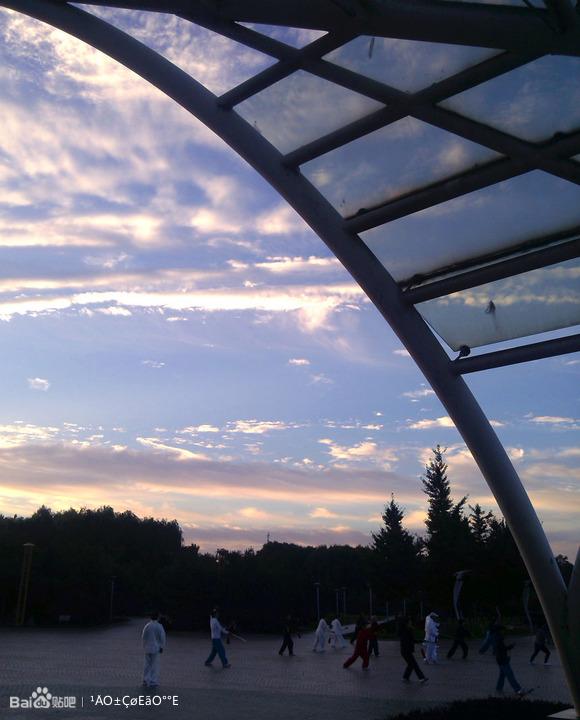 手机拍摄黄台山公园旱晨图片