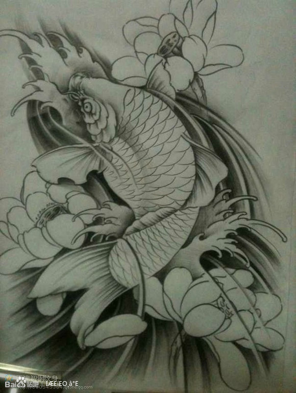 鲤鱼纹身图片图片