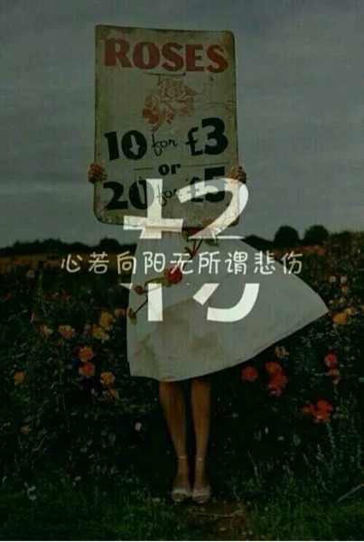 我姓杨,心若向阳,无所谓悲伤图片
