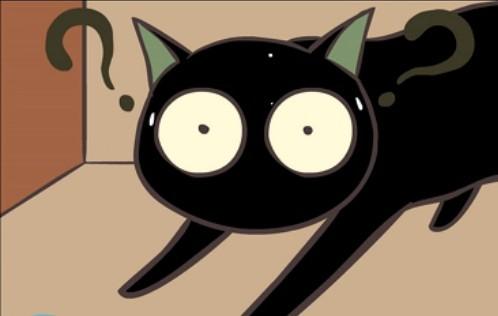 有关猫的动画片图片