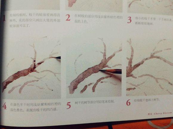 有会画樱花树的吗?图片