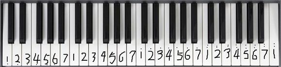 【电子琴教程】电子琴基本和指法练习图片