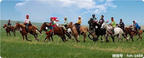 云南的蒙古族人口约13000图片