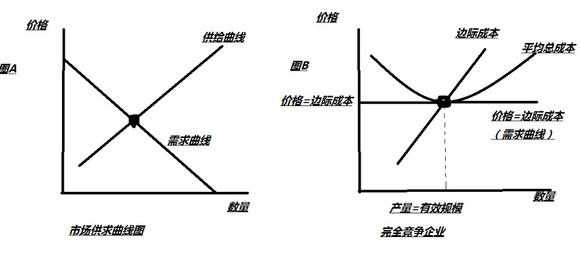 【微观经济学原理问题】市场供求曲线和完全竞争市场图片
