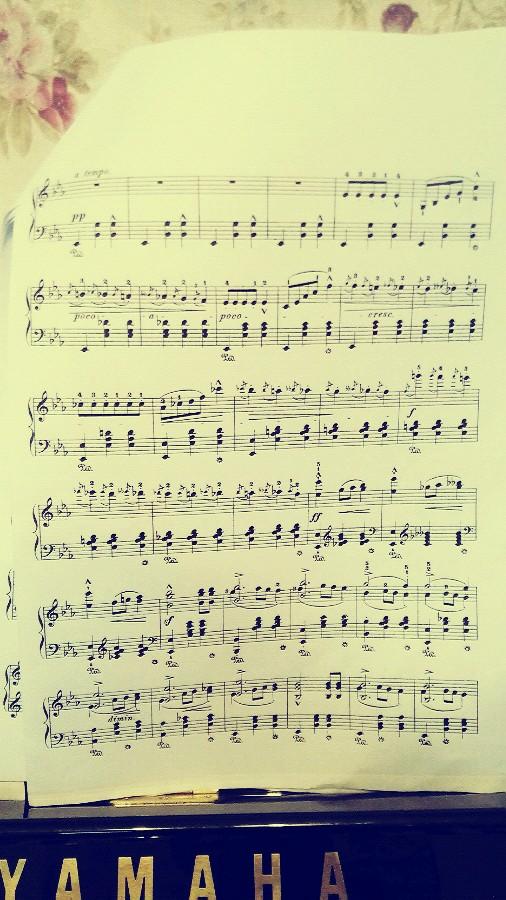 叙事谐谑 12                     挺难的,肖邦圆舞曲里是最难的几个图片