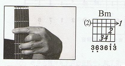 正式月琴已经一周了……横按f图片