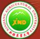 正在复制新农大建校60周年巡礼 谁要看_新疆农业大学图片