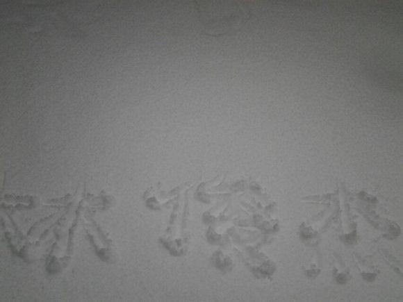【时:线】我在雪地里写下了老林的名字图片