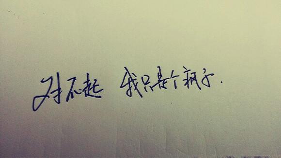 [手写: 孤独 是一个人的狂欢]图片