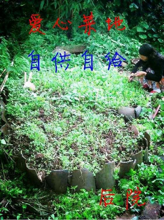 【图片】丽江生活游记~每天持续更新【博兴吧
