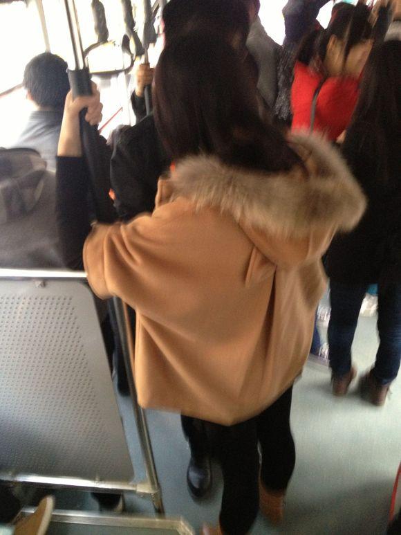 公交美女 郑州吧