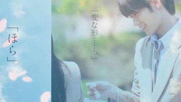【榜单】近年日本纯爱电影十部高分佳作&低分烂作