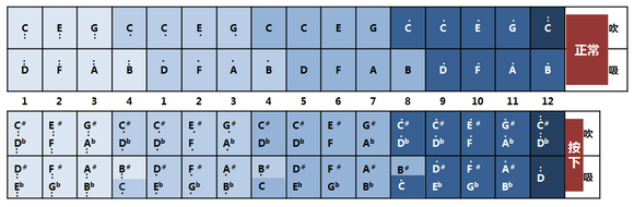 请教-画了个16孔半音阶口琴的音阶图图片