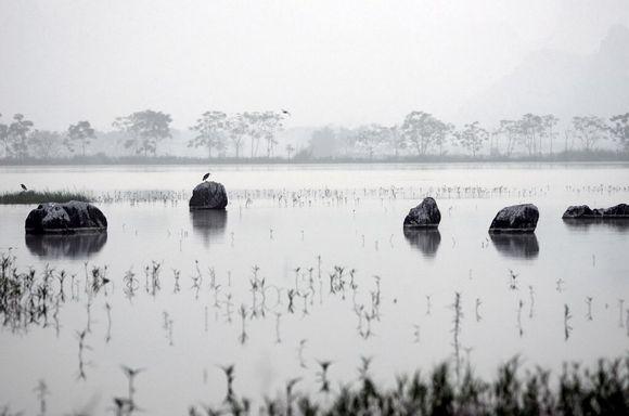 上林三里杨渡+湿地图片