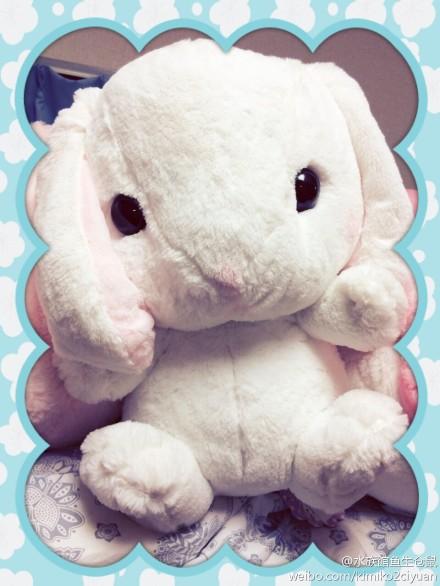 兔子背包图片