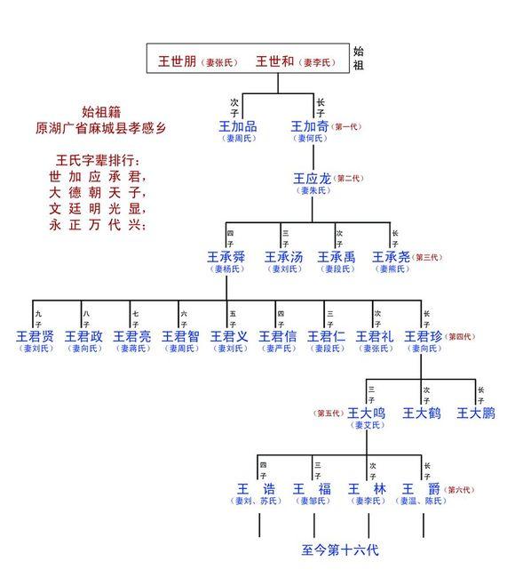 寻王氏宗亲 始祖原湖广省麻城县孝感乡图片
