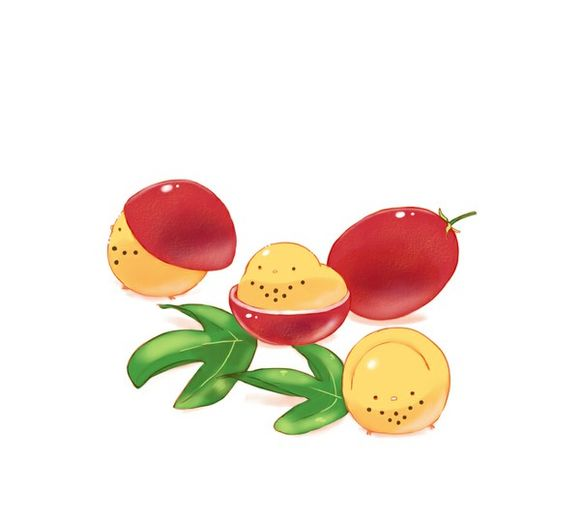 百香果高清图片
