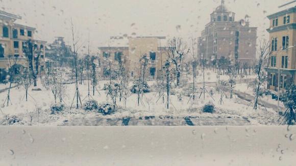 下雪了下雪了来看雪景图片
