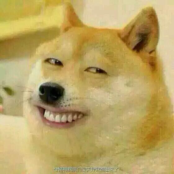 求狗的表情,就是那个滑稽狗图片
