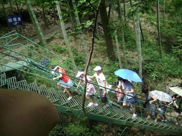 住在杭州,要数一数周边的旅游景点的话,安吉是万万不能错过高清图片