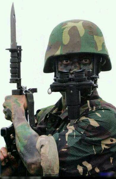 中国最神秘的特种部队 龙焱特种部队 八一军旗吧 百度贴吧