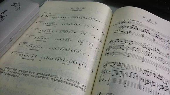12孔半音阶口琴图片