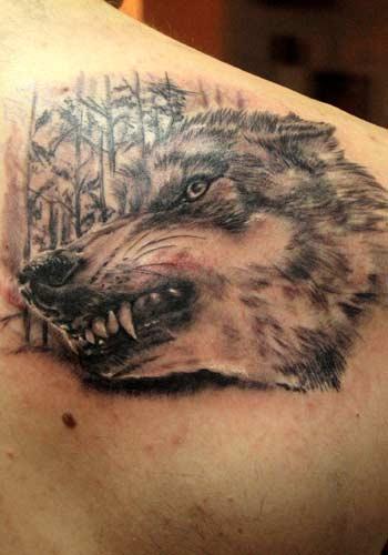 求几个胸口,手臂狼的纹身,如狼头,滴血狼头,苍狼啸月等,谢谢图片