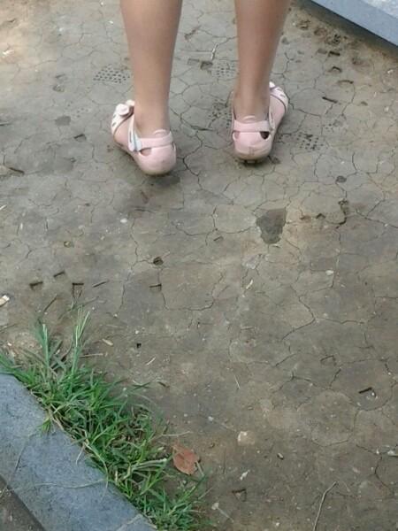 帆布鞋棉袜 露脸 莲秀