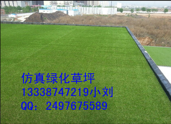 绿舒坦人造草坪厂,运动休闲景观草坪,草坪种类多 草皮吧 百高清图片
