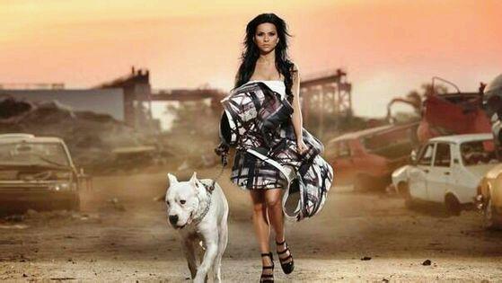 美女与猛犬 狼青吧